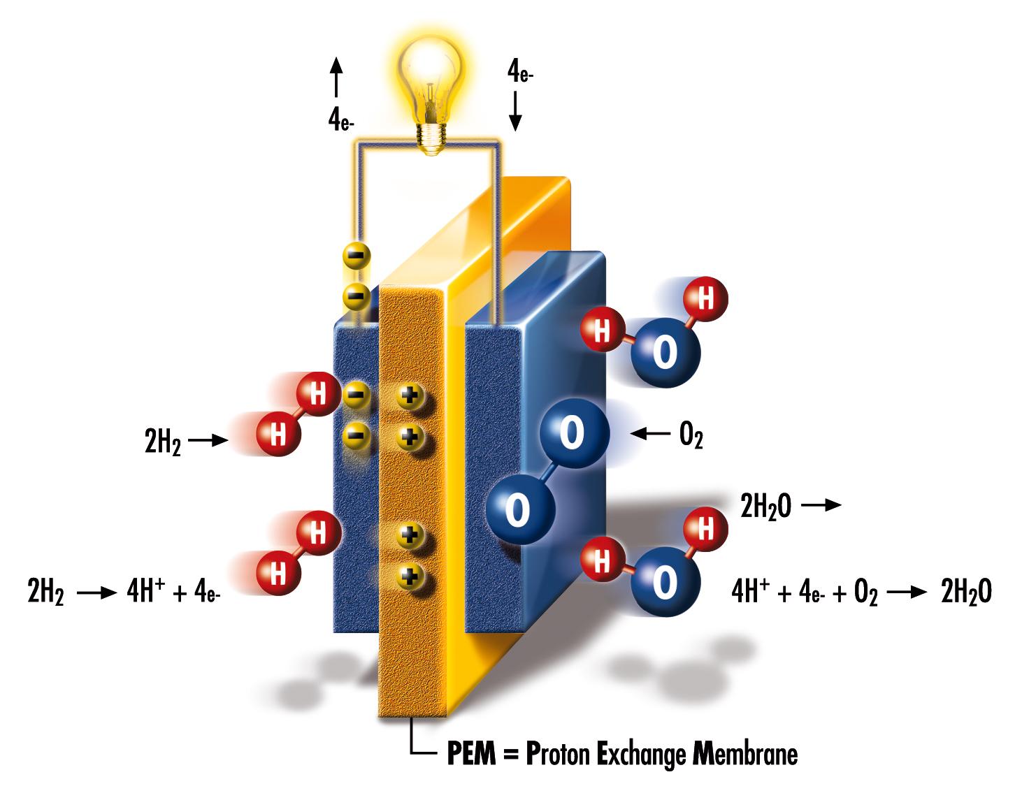 electrolyseur p.e.m